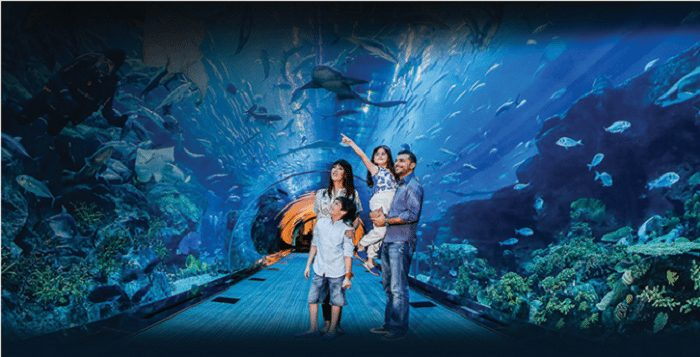 Enjoy a Guided City Tour Plus Access to Dubai Aquarium With Baison Travels from AED 129 - Dubaisavers