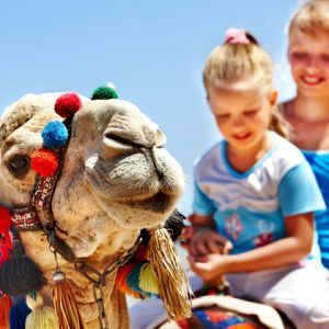 Arabian Heritage Tours