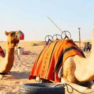 Dubai for Destination Tourism