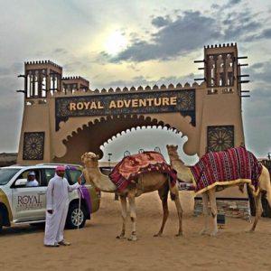 Royal Adventure Travel & Tourism