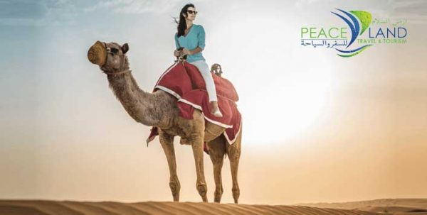 Peace Land Travel & Tourism
