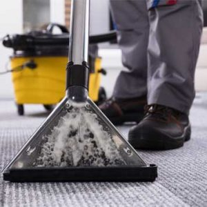 Ace Cleaning and Pest Control Systems