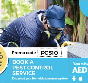 10% off on Pest Control Services - Dubaisavers