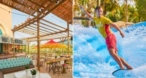 Wavehouse at Atlantis The Palm's to host huge Wavefest - Dubaisavers