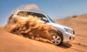 Desert Safari with Seven Live Shows with Gateway Tours - Dubaisavers