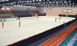 Ice Skating Session at Al-Nasr Leisureland - Dubaisavers