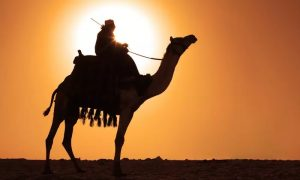 VIP Overnight Desert Experience with Dinner and Breakfast from Knight Tours - Dubaisavers