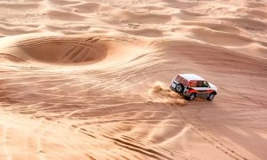 Desert Safari Experience for One, Two or Four with Luxury Tours - Dubaisavers