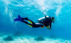 PADI Scuba Course at Nemo Diving Centre - Dubaisavers