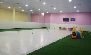 One-, Three- or Five-Day Care for Small or Medium Dog at Paws and Whiskers Pets Nursery - Dubaisavers