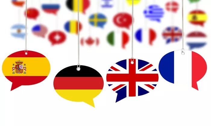 Up to 12-Month Access to Foreign Language Course Content from Lerni AE - Dubaisavers