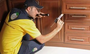Pest Control for Up to Five Rooms with Engineering Techniques Services - Dubaisavers