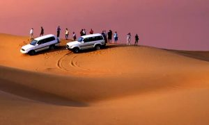 Desert Safari at New York Tours - Dubaisavers