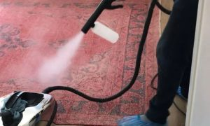 Sanitisation and Disinfection for Apartment or Villa from ProAqua Building Cleaning Services - Dubaisavers
