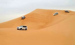 Desert Safari with RAH Tours - Dubaisavers