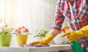 Three, Four or Six Hours House Cleaning and Ironing Service with TPR Technical Services - Dubaisavers