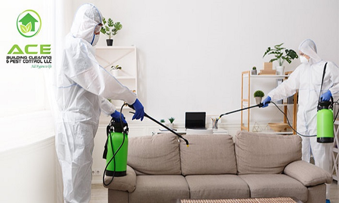 Home Disinfection Service from Ace building Cleaning & Pest Control - Dubaisavers