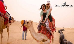 Desert Safari by Desert Falcon Tourism - Dubaisavers
