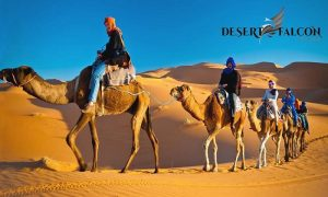 VIP Desert Safari by Desert Falcon Tourism - Dubaisavers