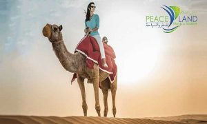 Desert Safari Packages with Transportation by Peace Land Travel & Tourism - Dubaisavers